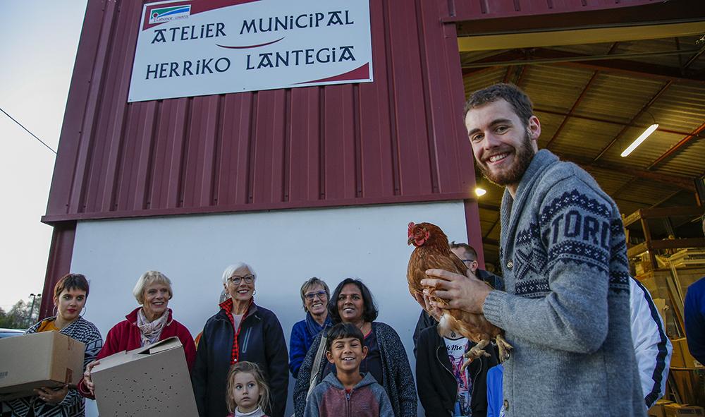 """Environnement : A Lahonce au Pays basque, l'opération """"Des poules pour réduire les déchets"""", à l'initiative de la mairie, pour les Lehunztar."""