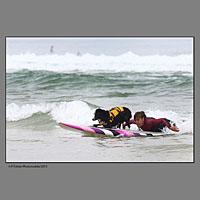 Surfeuse avec son chien lors de la compétition européenne de surf canin à Vieux Boucau dans les landes organisée par les Toutous Surfeurs, et la clinique vétérinaire Zatozte, à Bidart (64).Plage des Sablères ( la plage Nord) de Vieux Boucau.