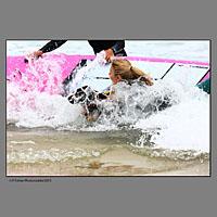 Elodie Ageron l'animatrice vedette de la chaine D8 lors de la compétition européenne de surf canin à Vieux Boucau dans les landes organisée par les Toutous Surfeurs, et la clinique vétérinaire Zatozte, à Bidart (64).