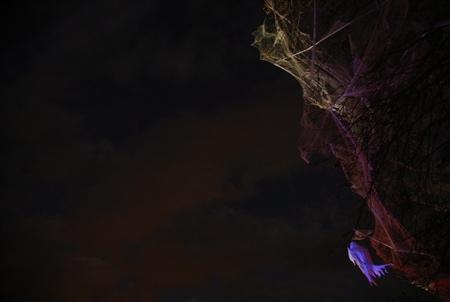 Fantômes dans les arbres la nuit lors du Biarritz Halloween edition 2017 dans le jardin public de la ville de Biarrirz, organisé par la ville de Biarritz via l'association Biarritz Evenement. La fete d halloween a Biarritz au Pays Basque: Halloween ou L Halloween est une fete originaire des iles Anglo-Celtes celebree dans la soiree du 31 octobre veille de la Toussaint.