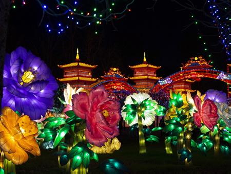 Le jardin des fleurs de la fééries de Chine, festival des lanternes à Gaillac dans le tarn, le festival des lanternes est un événement majeur de la culture traditionnelle chinoise.Le festival a traversé les frontières dans les année 80 pour se produire dans plus de 50 pays étrangers, Etats-Unis et au Canada. Fruit du jumelage entre Zingong et Gaillac, Ville d'art et d'histoire, le festival des lanternes se compose de 42 tableaux monumentaux, soit près de 1000 lanternes. Les grandes thématiques de la culture traditionnelle chinoise sont présentées, avec comme fil rouge, les Cités Impériales de la route de la Soie sous la dynastie Tang.Le festival valorise aussi le patrimoine et le vignoble gaillacois, le plus ancien des vignobles français et l'harmonie de la nature dans le parc historique classé de Foucaud.                   Gaillac, Tarn, Occitanie, France, Europe, Monde