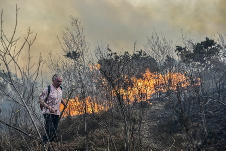 Ecobuages non maîtrisés et incendie sur Ibardin et la montagne de la Rhune, 700 hectares ont été ravagés dans la montagne d'Ascain. Dans le département, une dizaine d'incendie sont liés à des écobuages non maîtrisés, le samedi 20 février. La cause de celui d'Ascain reste à définir précisément. Les habitants s'approchent des fumerolles pour les éteindre et limiter leur progression (photo) . A Ascain la montagne s'est embrasée, donnant l'impression d'une Rhune en feu.
